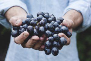hands_blueberry