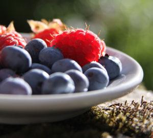 raspberry_blueberry